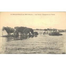 LES SALINES - CHARGEMENT VARECH - BRICQUEVILLE SUR MER 50