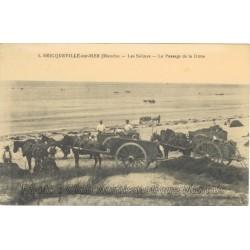 LES SALINES - PASSAGE DUNE - BRICQUEVILLE SUR MER 50