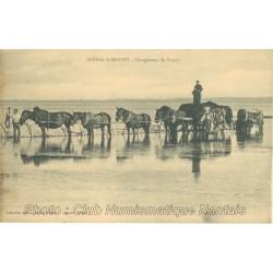 CHARGEMENT DU VARECH - ST MARTIN DE BREHAL 50